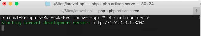 Laravel 8 php artisan serve